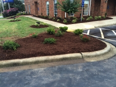 Cont Landscaping and Grading_2.jpg
