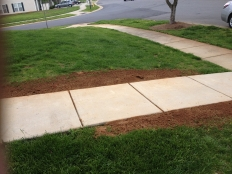 Cont Landscaping and Grading_9.jpg