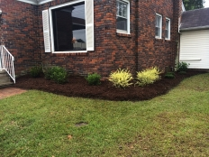 Landscaping and Hardscapes_4.jpg