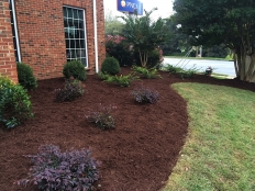 Lawn Care and Landscaping_11.jpg