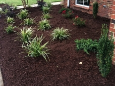 Lawn Care and Landscaping_7.jpg