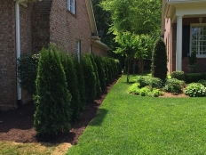 Landscaping and Hardscapes_12.jpg