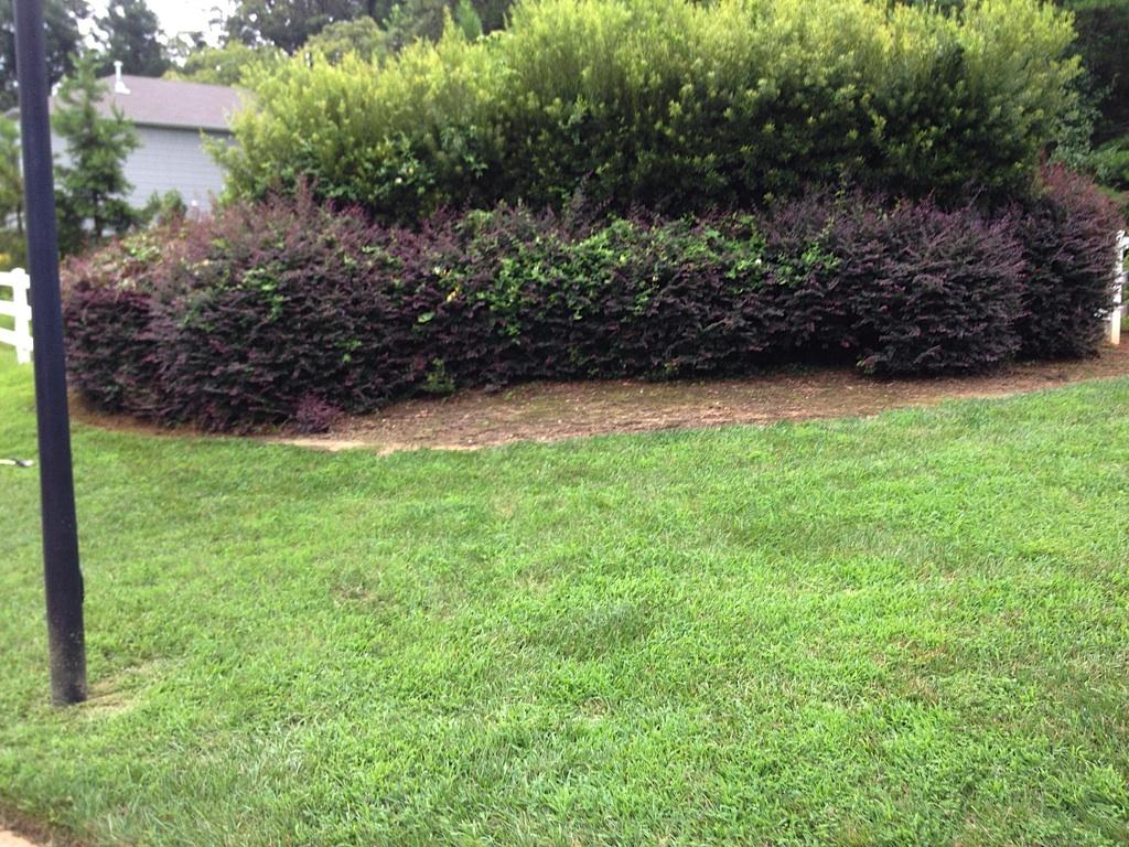 Landscape Contractor - Gastonia NC