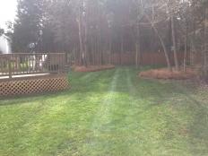 Lawn Care_10.jpg