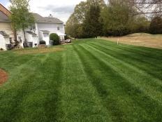 Lawn Care_11.jpg