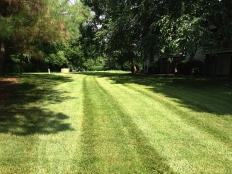 Lawn Care_13.jpg
