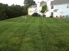 Lawn Care_14.jpg