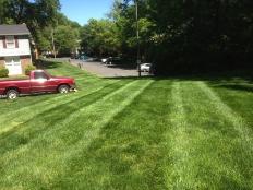 Lawn Care_3.jpg