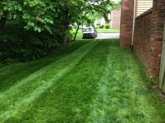 Lawn Care_4.jpg
